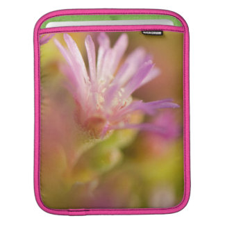 Diffused Image Of A Colorful Succulent Flower Sleeves For iPads