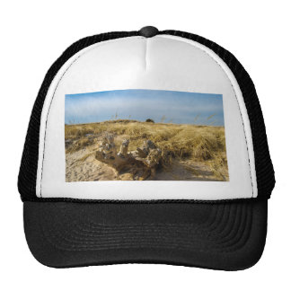 DIFTWOOD On The Beach Trucker Hat