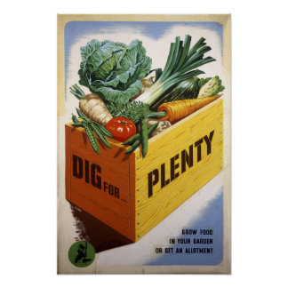 Dig For Plenty - Fruit and Veg Posters