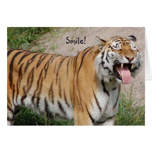 Diga la tarjeta del tigre del queso