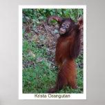 Diga no a los matones - orangután de Krista Posters