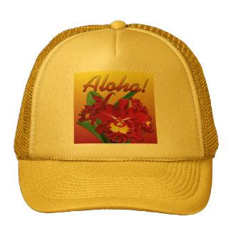 ¡Dígalo con hawaiana! Gorras