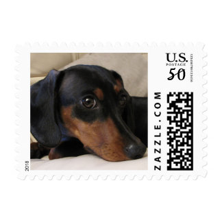 Digger the Dachshund Postage