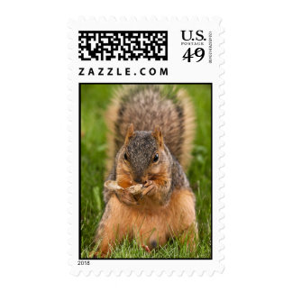 Digging In Postage Stamp