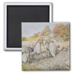 Digging Potatoes, 1905 2 Inch Square Magnet