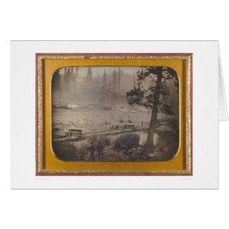 Diggings at Grizzly Flat, El Dorado Co.  (40070) Card