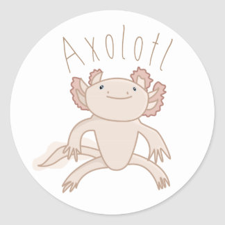 Digital Axolotl Illustration, Cute Animal Classic Round Sticker
