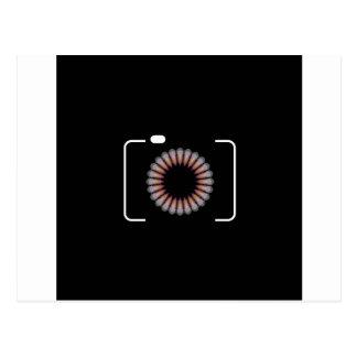 Digital camera with a floral aperture postcard