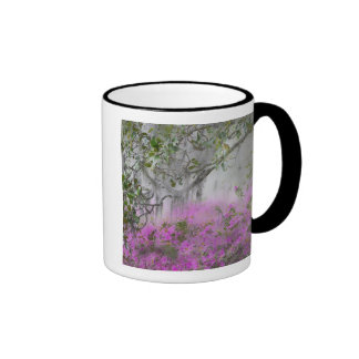 Digital Composite of Azaleas and magnolia tree Ringer Coffee Mug