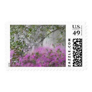 Digital Composite of Azaleas and magnolia tree Postage