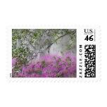 Digital Composite of Azaleas and magnolia tree Stamps