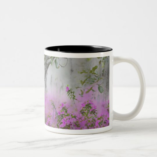 Digital Composite of Azaleas and magnolia tree Two-Tone Coffee Mug