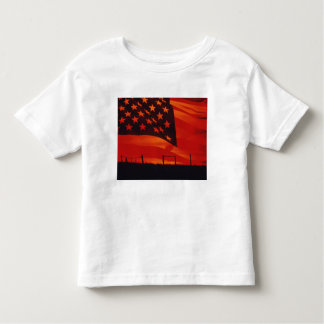 Digital composite of the American Flag T-shirts