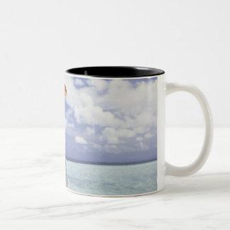 Digital composition Two-Tone coffee mug
