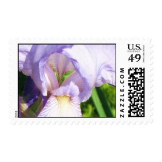 Digital Iris Postage