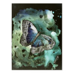 digital monarch butterfly painting post card