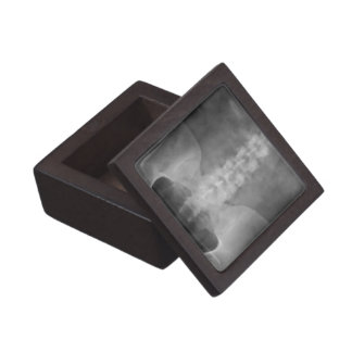Digital X-Ray Art Gift Box