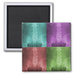Digital X-Ray Art Magnet