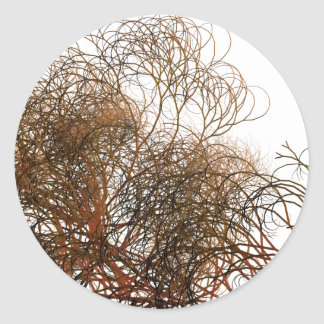 Digitally painted colourful winter branches illust classic round sticker