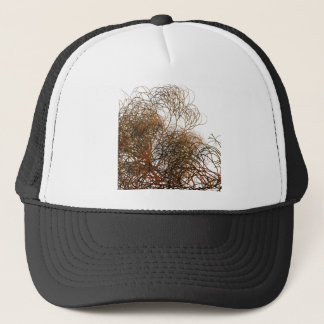 Digitally painted colourful winter branches illust trucker hat