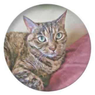 Digitally Painted Pussycat Dinner Plate