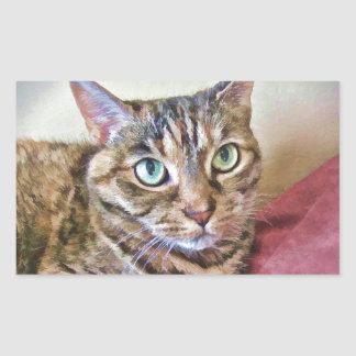 Digitally Painted Pussycat Rectangular Sticker