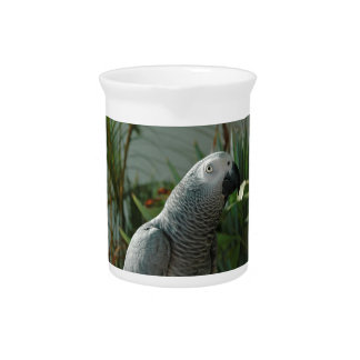 Dignified African Grey Parrot Beverage Pitcher