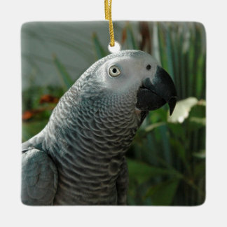 Dignified African Grey Parrot Ceramic Ornament