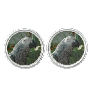 Dignified African Grey Parrot Cufflinks