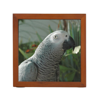 Dignified African Grey Parrot Desk Organizer