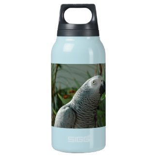Dignified African Grey Parrot Insulated Water Bottle