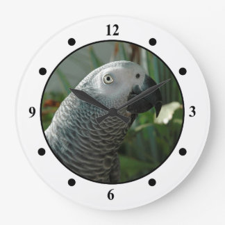 Dignified African Grey Parrot Large Clock