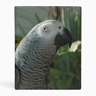 Dignified African Grey Parrot Mini Binder