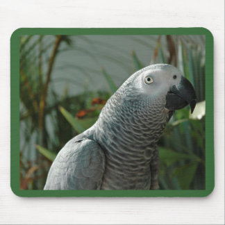 Dignified African Grey Parrot Mouse Pad