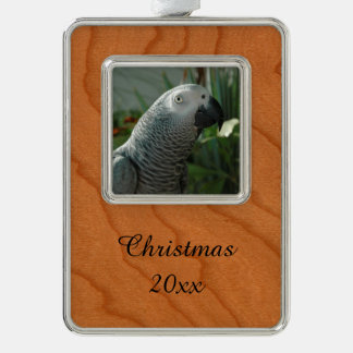 Dignified African Grey Parrot Silver Plated Framed Ornament
