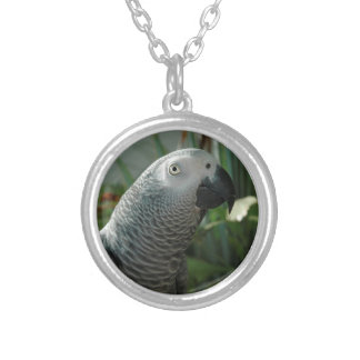 Dignified African Grey Parrot Silver Plated Necklace