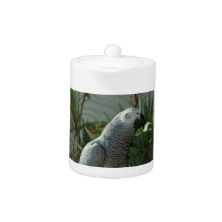 Dignified African Grey Parrot Teapot