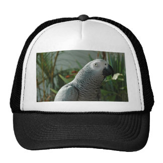 Dignified African Grey Parrot Trucker Hat