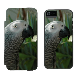 Dignified African Grey Parrot Wallet Case For iPhone SE/5/5s