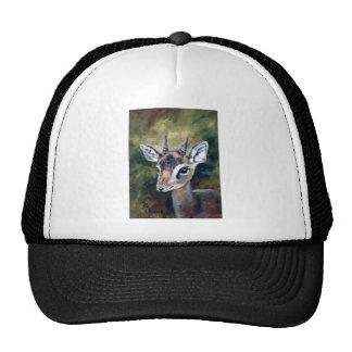 Dikdik Dwarf Antelope Hat