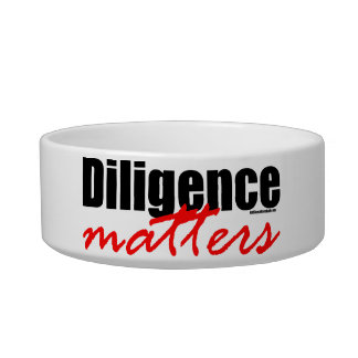 Diligence Matters Bowl