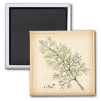 Dill Herb, Dill Weed 2 Inch Square Magnet