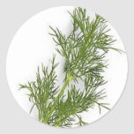 Dill Weed Classic Round Sticker