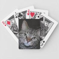 Dillan The Cat Bicycle Card Deck