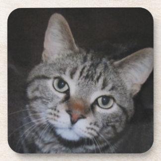 Dillan The Cat Cork Coasters