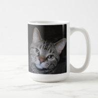 Dillan The Cat Mug