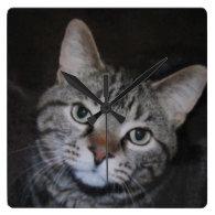 Dillan The Cat Wall Clocks