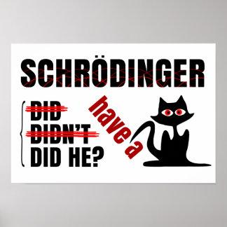 Dillema de Schrodinger Póster