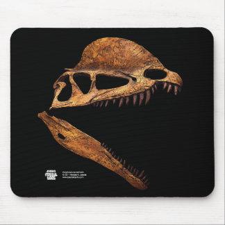 Dilophosaurus Skull Profile Mousepad