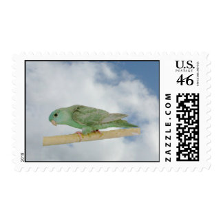 Dilute turqoise linnie postage stamp